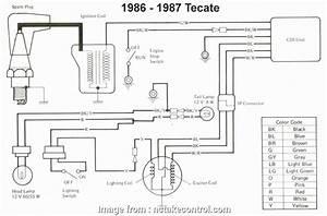 12 Practical Eterna Doorbell Wiring Diagram Collections