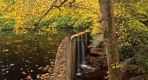 Hampton Lake in Fall - Cashiers, North Carolina - Matt