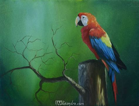 Reference Photos for The Parrot Acrylic Painting Tutorial ...