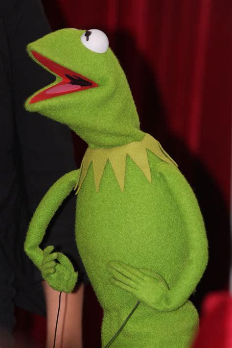 kermit  frog  muppets australian premiere