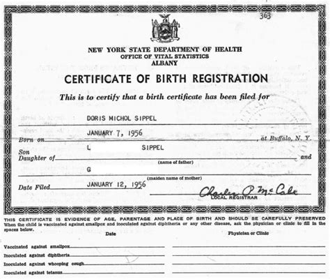 new york state birth certificate form false information on birth certificate forbidden family