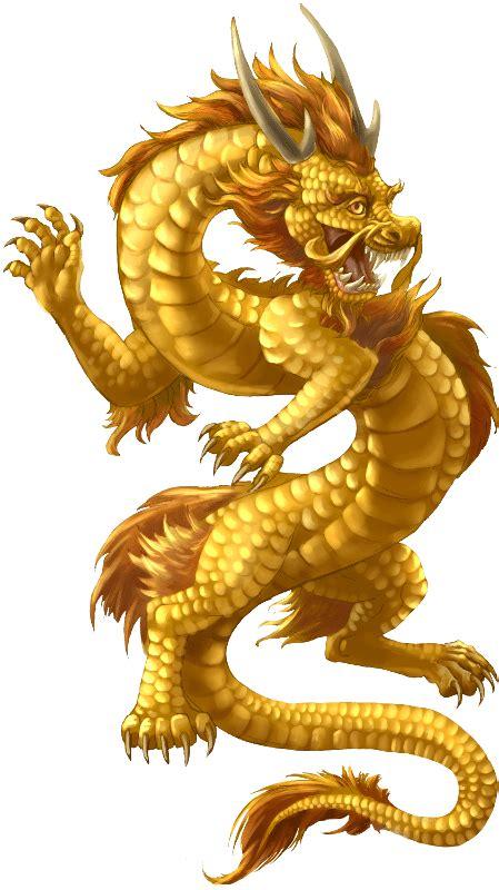 gold dragon dragon art   dragon chinese dragon art japanese dragon tattoos