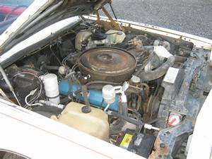 Aftermarket Chop Top  1979 Oldsmobile Toronado