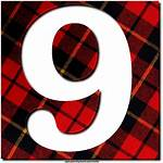 Plaid Texture Letters Alphabet Number Greetings Numbers