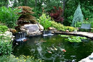 Higher's Koi Pond - Traditional - Landscape - atlanta - by