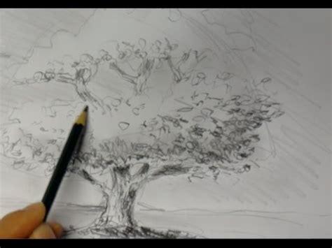 ganz einfach zeichnen lernen  baum youtube