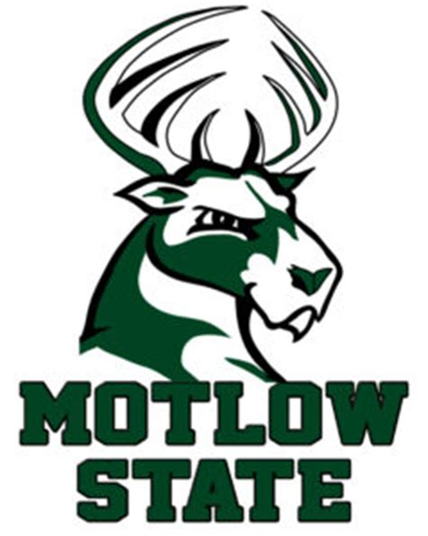 softball leads motlow state athletic programs  team gpa