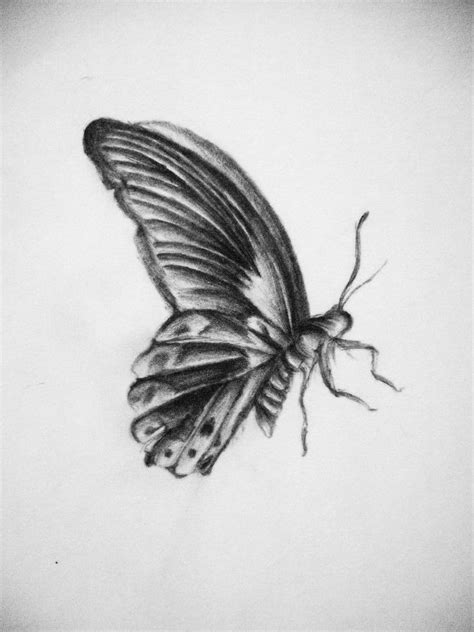 Small Flying Butterfly Drawing | tattoos in 2019 | Tattoo