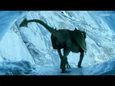 dragon  fantasy  real youtube