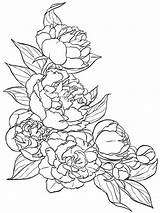 Coloring Flower Pages Peony Drawing Flowers Printable Pattern Tattoo Drawings Template Floral Patterns Sketches Line Colouring Designs Getcolorings Visit Google sketch template