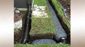 drains design installation priority pest services