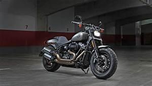 Harley Fat Bob : harley davidson fat bob 2013 std price mileage reviews specification gallery overdrive ~ Medecine-chirurgie-esthetiques.com Avis de Voitures