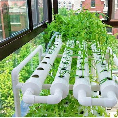 Hydroponic Culture Water Deep Piping Grow Pump