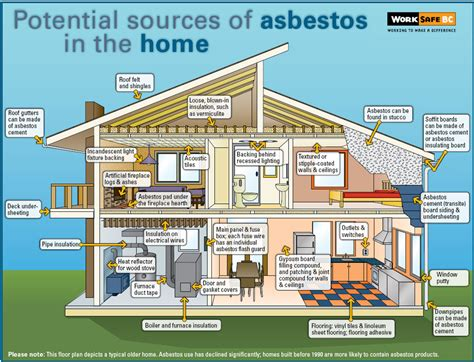 asbestos canadian cancer survivor network