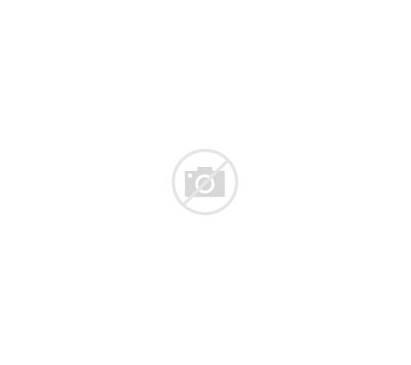 Animals Adoptable Deviantart Closed Deviant