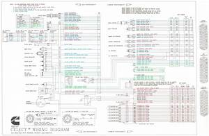 Stunning N14 Celect Ecm Wiring Diagram Photos Electrical