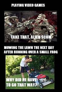 Daily Afternoon Chaos 35 Pictures Funny Pictures