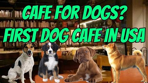 Caffeine can cause a serious increase in heart rate and can cause seizures at a high enough level. Cafe For Dogs?   First Dog Cafe in USA!   Coffee and ...