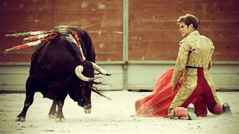 Bull and toreador wallpapers and images - wallpapers ...
