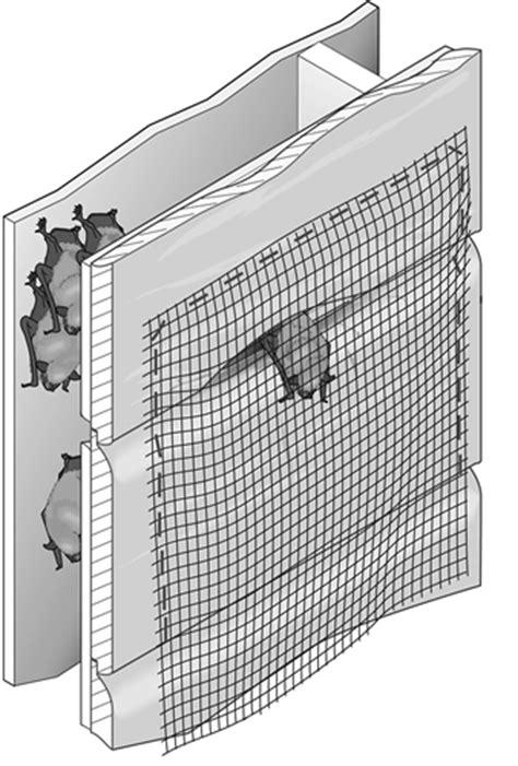 one way bat door bats living with wildlife washington department of