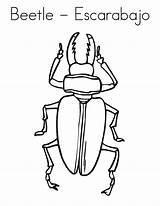 Coloring Beetles Beetle Pages Six Legs Bugs Bug Printable Escarabajo Outline Cursive Twistynoodle Favorites Login Built California Usa Noodle Bestcoloringpagesforkids sketch template