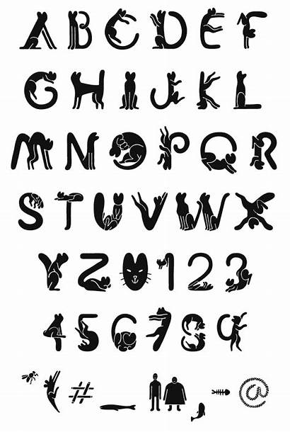 Cat Font Vicente Alphabet Fonts Creative Lettering