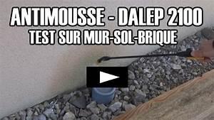 Anti Mousse Et Hydrofuge 2 En 1 : dalep 2100 test sur toiture antimousse professionnel hydrofuge ~ Melissatoandfro.com Idées de Décoration