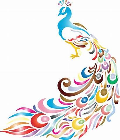 Peacock Clipart Clip Background Cartoon Border Vector