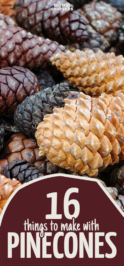 perfect pine cone crafts share todays craft  diy