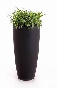 Blumenkübel Bepflanzen Vorschläge : blumenk bel pflanzk bel fiberglas rona 80cm anthrazit ebay ~ Whattoseeinmadrid.com Haus und Dekorationen