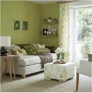 Photos Of Living Rooms With Green Walls by Olive Green Living Room Possibly For The Home Pinterest Paint Colors T