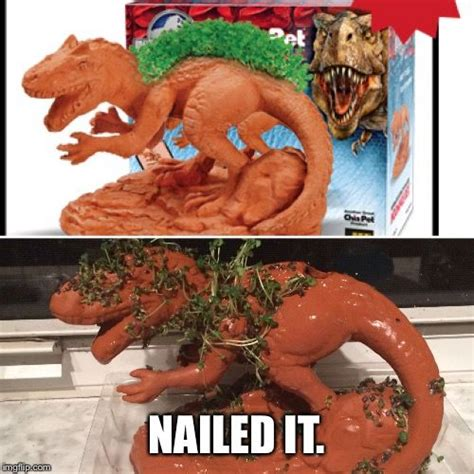 Nailed It Memes - 1000 ideas about nailed it meme on pinterest nailed it pinterest fails and baking fails