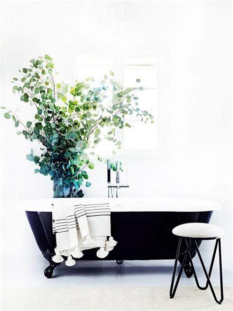 planten in badkamer planten in de badkamer thestylebox