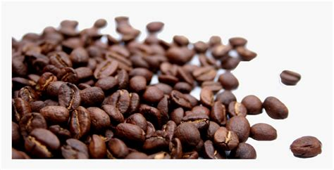 Pngkit selects 90 hd coffee icon png images for free download. Coffee Beans Png - រូបភាពប្លុក   Images