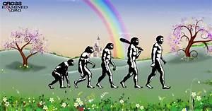 university of iowa mfa creative writing acceptance rate evolution vs creationism essay evolution vs creationism essay