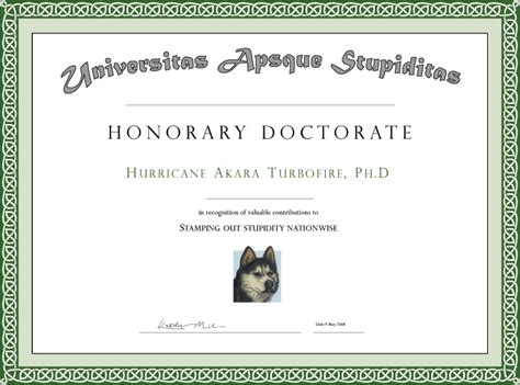 phd degree phd degree template
