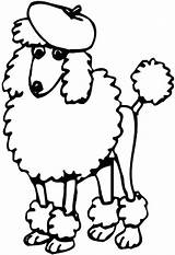 Chow Coloring Pages Getcolorings Poodle sketch template