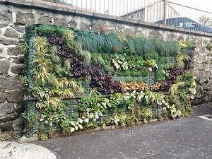 Mur Végétal Extérieur : construire mur vegetal exterieur construire mur vegetal ~ Louise-bijoux.com Idées de Décoration