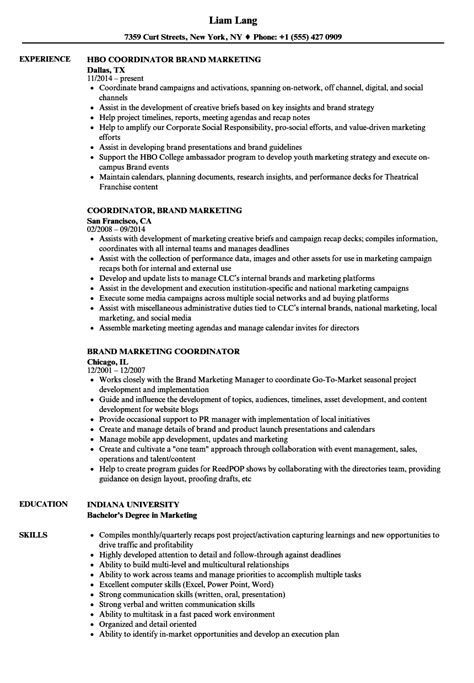 Marketing Coordinator Resume by Brand Marketing Coordinator Resume Sles Velvet