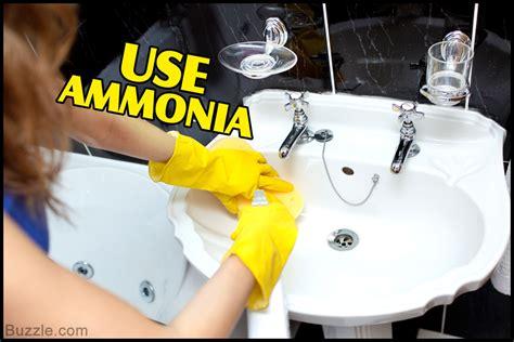 Ultimate Tricks For Getting Rid Of Fruit Flies In The Bathroom
