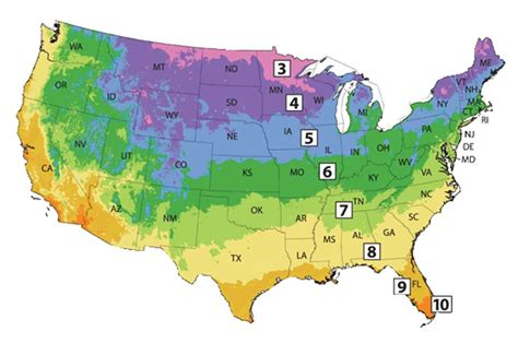 garden basics usda hardiness zone map captain planet