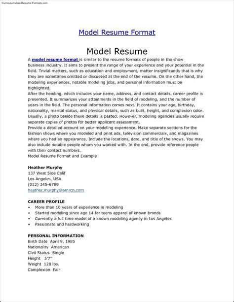 Model Resume Format by Model Resume Templates Free Sles Exles Format