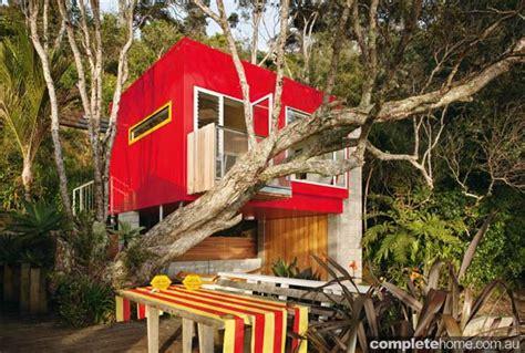 grand designs australia  zealand tree house completehome