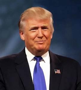 President Donald John Trump Portrait Painting by Movie ...