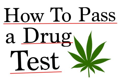 How To Pass A Drug Test For A Job Passing A Urinalysis Or. Direct Tv Satellite Deals Cable Tv Durham Nc. Condo Insurance Policy 2 Year Nursing Program. Accepting Donations Online Buy An Email List. Customized Stress Ball First Aid Aed Training. Electrical Engineer Training. Best Satellite Tv And Internet. Hotels Koblenz Germany Tax Resolution Company. In House Drug Rehab Centers On Line Tutoring