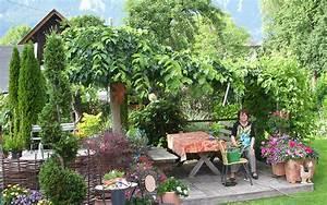 Bäume Und Sträucher Für Den Garten : straucher fur den garten ~ Michelbontemps.com Haus und Dekorationen