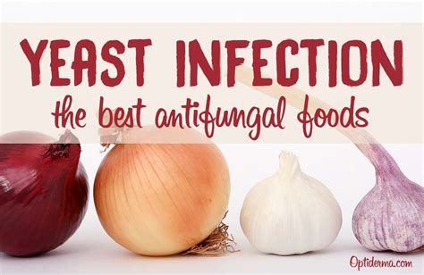 Antifungal Foods What Are The Best Foods To Fight Yeast