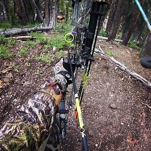 The Pursuit - (P&Y 6X7) - Archery Elk Hunting in Idaho ...