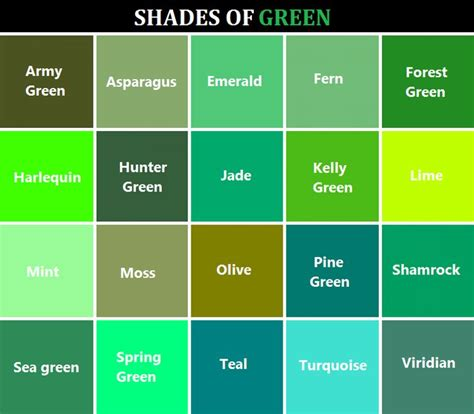 green colors names 17 best ideas about shades of green names on