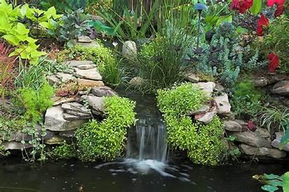 Animated Animation Gifs Garden Backyard Water Pond